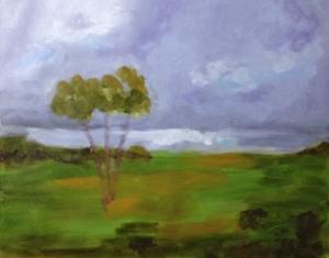start of stormy field