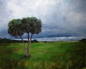 Stormy field